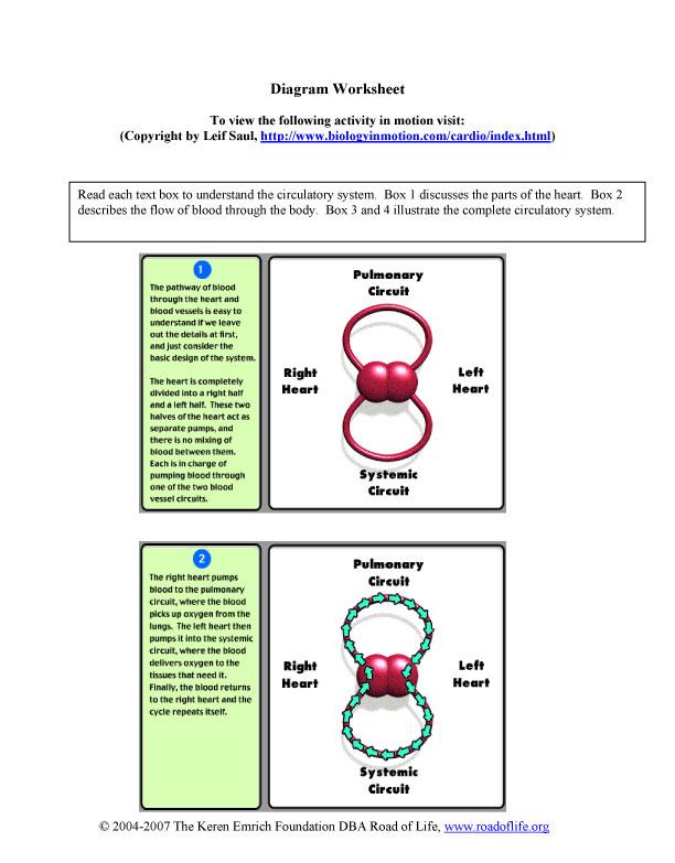 diagram-worksheet-1.jpg